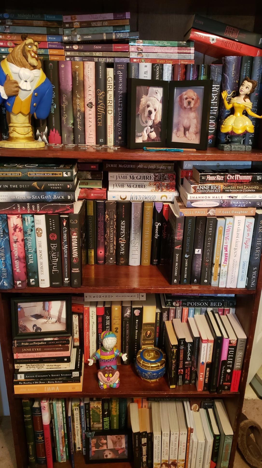 Genre Bookshelf